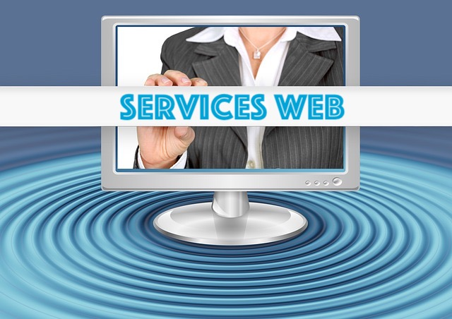 consultants seo expérimentés en services web et digitaux